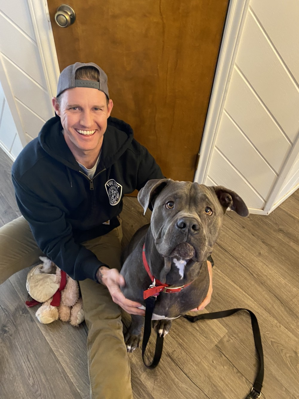 Love-A-Bull King After Rescue